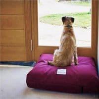 Waterproof Orthopaedic Dog Bed